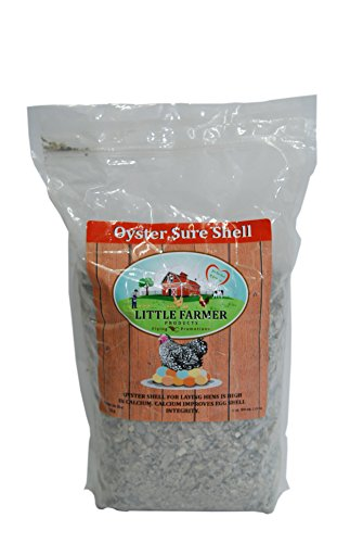 LITTLE FARMER PRODUCTS Oyster Sure Shell | Natural Oyster Shell for Chicken Poultry Calcium Supplement | 5 lbs