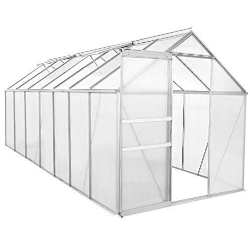 Zelsius Aluminium Gewächshaus für den Garten | 430 x 190 cm | 6 mm Platten | Vielseitig nutzbar als Treibhaus, Tomatenhaus, Frühbeet und Pflanzenhaus