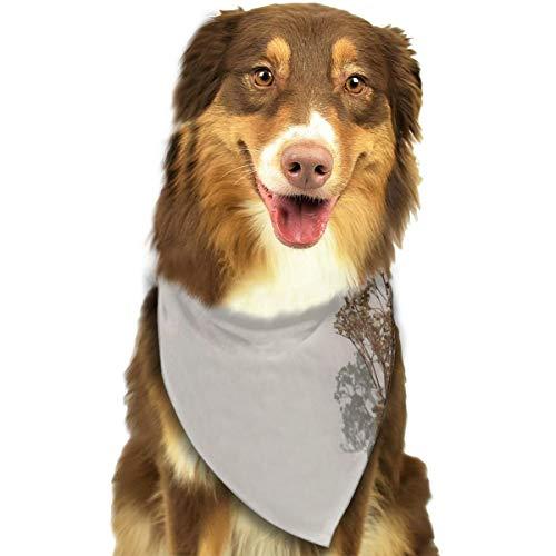 N/B Bbgsw Gedroogde Bladeren Op Glas Vaas Naast Beton Muur Aangepaste Hond Hoofddoek Heldere Gekleurde Sjaals Leuke Driehoek Bibs Accessoires Voor Huisdier Honden