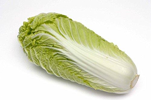 100 graines - CHOU CHINOIS Pé Tsaî Amélioré - Brassica rapa