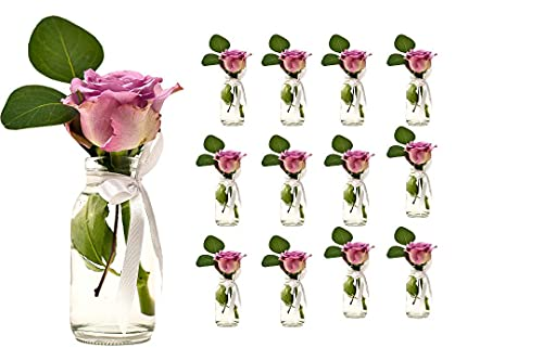 Casavetro 12 x pequeños jarrones Botellas de Cristal C-Deko-TR-Cuello Ancho Incluido Lazo rústico Vintage jarrón de Transparente Mini de Leche de decoración, Vidrio, Blanco, 12 Stück Weiss