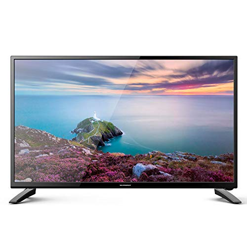 Schneider TV LED 24' Full HD, SC-LED24SC510K, HDMI, USB 2.0, 1920x1080p, Sintonizador DVB-T/2/C, Negra