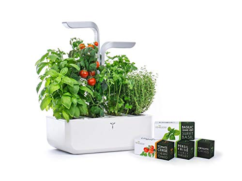 VÉRITABLE hydroponischer Kräutergarten Smart Edition inkl. 4 Kräuter Samenkit Indoor Garden Garten