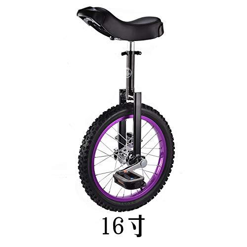 Einrad, Laufrad, Farbrad Adult Single Wheel, Wettkampf Fitness Walking Einrad-16 Zoll Farbkreis lila