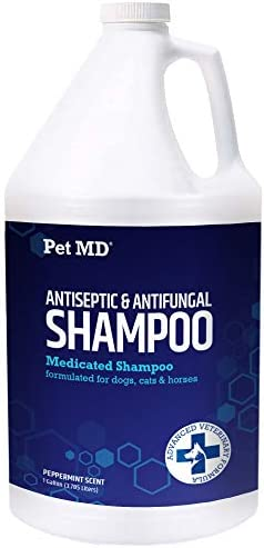 Pet MD Medicated Shampoo for Dogs, Cats, & Horses with Ketoconazole & Chlorhexidine - Medicated Shampoo for The Treatment of Skin Conditions, Infections, Acne, Abrasions, & Hot Spots