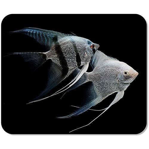 Mousepad Zilver Maanvissen Engel Vis Zoetwater Aquarium Zwart Scalar Dier Gedrukt Muis Mat School Mousepad Game Office Speciale Antislip Werk 25 X 30Cm Kleurrijk