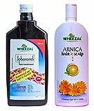 Wheezal Jaborandi Hair Treatment Oil (500ml) & Wheezal Hair N Scalp Shampoo (200ml) - COMBO - KRIG'S Medicare