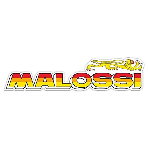 MALOSSI 1117735B Dichtungsring für Zylinderkopf Ø63