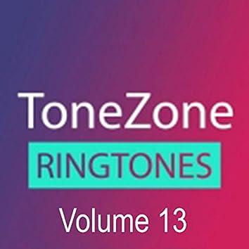 Tonezone, Vol. 13