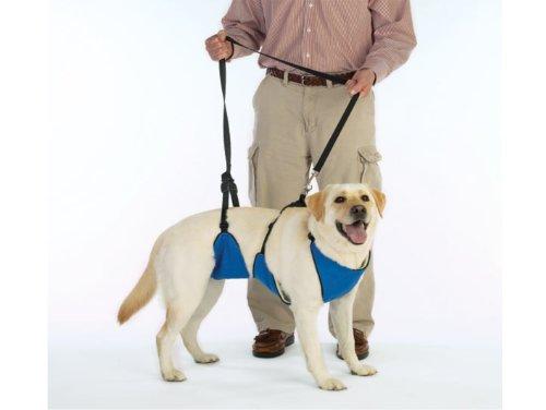 Guardian Gear Nylon Lift & Lead 4-in-1 Dog...