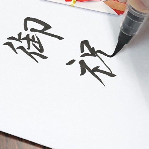 呉竹筆ペン美文字完美王XO50-10S毛筆中字
