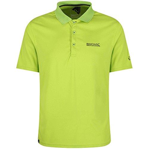 Regatta Maverick IV Poloshirt für Herren,Grün(lindGrün),3XL