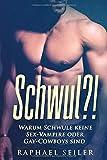 Schwul?!: Warum schwule keine Sex-Vampire oder Gay-Cowboys sind - Raphael Seiler