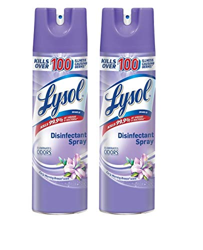 Lysol Disinfectant Spray, Early Morning Breeze, 19 Ounce (Pack of 2)