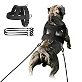 Forestpaw Dog Heavy Duty Harness with Training,Dog Harness Tactical with 3 Mental Rings,Soft Padded Vest for Medium Large Dogs,Black,S