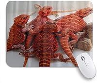 NIESIKKLAマウスパッド 赤トカゲひげドラゴン爬虫類 ゲーミング オフィス最適 高級感 おしゃれ 防水 耐久性が良い 滑り止めゴム底 ゲーミングなど適用 用ノートブックコンピュータマウスマット
