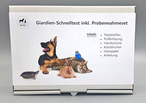 Giardientest - Schnelltest bei Verdacht auf Giardien bei Hunden, Katzen, etc.