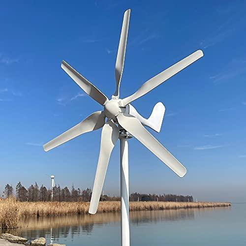 Rewindagic 800W Turbina eolica 12V 24V 48V generador de viento de energía libre para el hogar granja lámparas de calle 6 palas Molino de viento (12V con controlador MPPT)