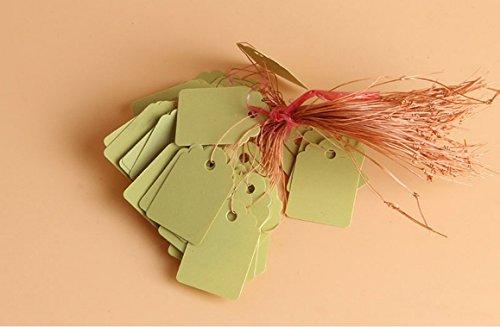 Zcsmg Environ 100 pcs pratique Plante Plastique marqueur étiquettes Little Outil de jardinage Accessoires (Jaune)