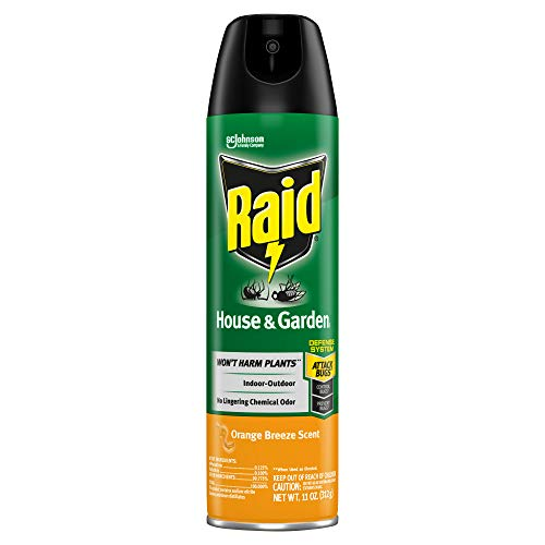 Raid House & Garden Insect Killer Spray, for Listed Ant, Roach, Spider, for Indoor & Outdoor Use, Orange Scent (11 Ounce (Pack of 1)