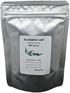 Eucalyptus Leaf Tea - Loose Leaf Cut/Sifted by Nature Tea (4 oz)