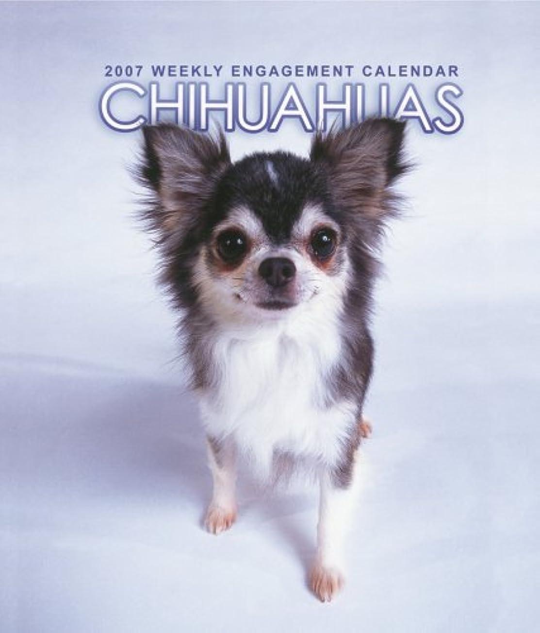 鉱石なるエンディングChihuahuas 2007 Weekly Calendar