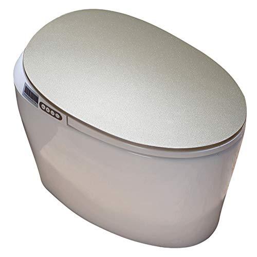 VIY Integrierte Elektrisch Toilette, Smart Beheizte Bidet Wc-Sitz, Mit Dual Nozzle Massage Steuerung, Toilettendeckel, mit Gewärmter Sitz, Warme Lufttrocknung, Fernbedienung, Nachtlicht (1220W)