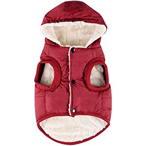 RC GearPro Dog Clothes Winter Cotton-Padded Jacket Hoodies Cat Puppy Cold Weather Coats Vest for Small Medium Large Dog (S, RED)