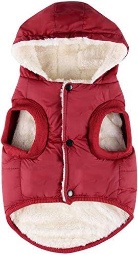 RC GearPro - Chaqueta de invierno acolchada de algodón para perros, gatos y cachorros pequeños, medianos y grandes - Chaleco con capucha