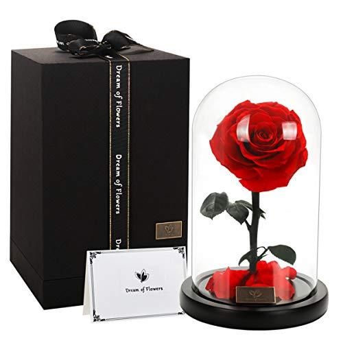 Cadeau St-Valentin DEL Rose printemps fleur Boîte Cadeau String Lights Vase Mariage Decor