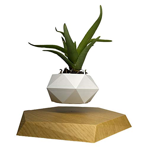 Authentic Levitating Floating Plant Pot for Air Plants, Magnetic Levitation Suspension Floating Pot, Bonsai Pot, Levitating Plant Pot, Rotating Plant Pot Timani