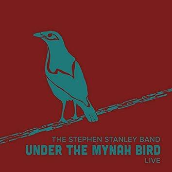 Under the Mynah Bird (Live)