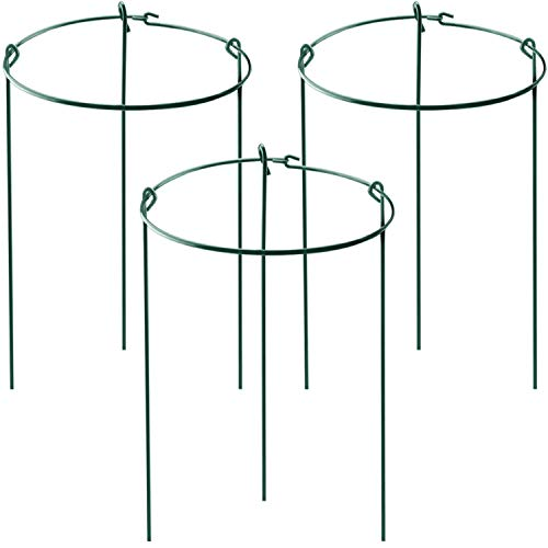HiGift 3 Pack Plant Ring Support for Potted Plants, Round Plant Support Stakes for The Garden, Plant Cages and Support for Peony Tomato, Rose, Vine (10' Wide x 17' High)