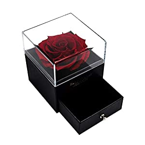 wuxiaobo Red Rose Gift Box, Immortal Enchanted Real Rose, Eternal Rose Flower in Jewelry Box, Handmade Preserved Rose, Forever Red Rose Gift for Her On Mother's Day, Anniversary, Valentine's Day
