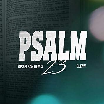 Psalm 23 (Biblelean Remix)