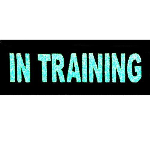 Táctico Entrenando In Training Perro de servicio Chalecos/arneses Broche Bordado de Gancho y Resplandor en el parche oscuro de Gancho y bucle de cierre