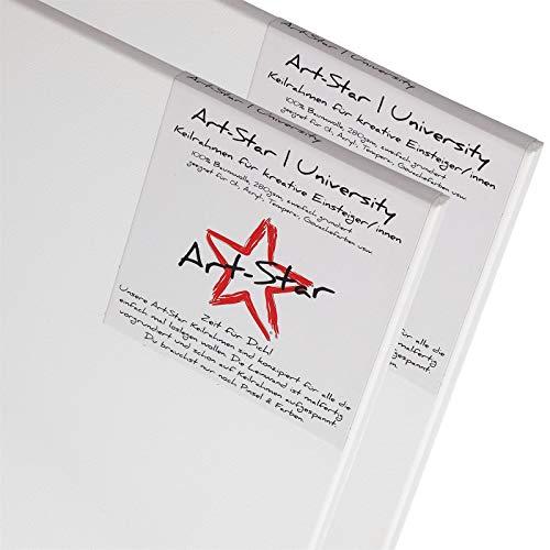 Art-Star 2X University KEILRAHMEN 30x40 cm | Leinwände auf Keilrahmen 30x40cm | Leinwandtuch vorgrundiert, malfertige bespannte rechteckige Keilrahmen mit Leinwand zum bemalen