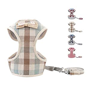 voopet Easy to Put On & Take Off Dog Harness, Puppy Padded Mesh Front Vest with Leash, Adjustable Pets No-Pull Walking Harness with Cute Bows for Small Dogs and Cats