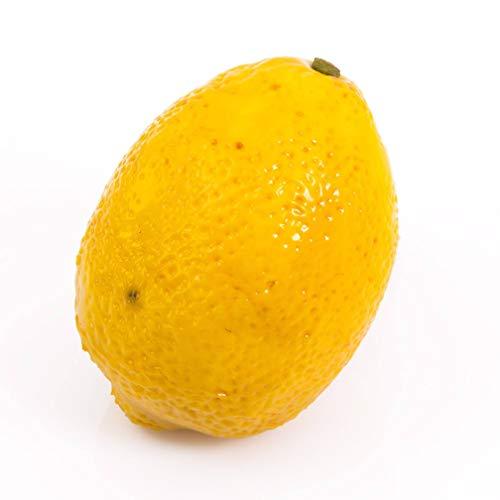 artplants.de Kunstobst Zitrone Elaine, gelb, 9cm, Ø 7cm - Plastik Früchte - Deko Obst