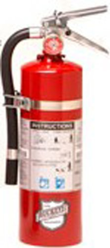 Buckeye 13514 Standard Dry Chemical Hand Held Fire Extinguisher with Aluminum Valve and Vehicle Bracket, 5.5 lbs Agent Capacity, 4-1/4