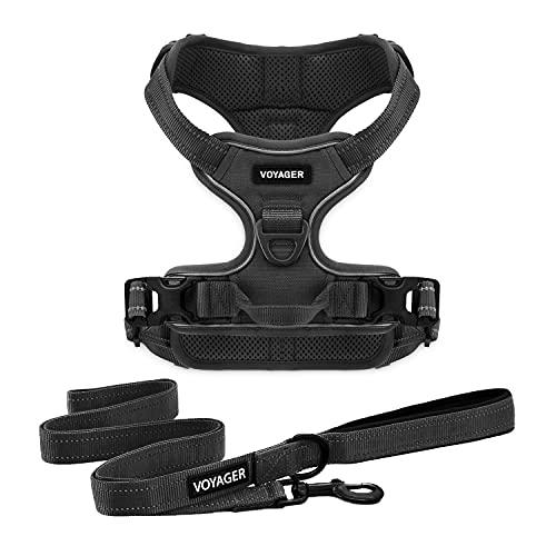 Best Pet Supplies Voyager Dual Attachment Outdoor Dog Harness and Leash Bundle by Best Pet Supplies   NO-Pull Pet Walking Vest Harness - Black, M (Chest: 22 - 27') (211CB-BK-M)