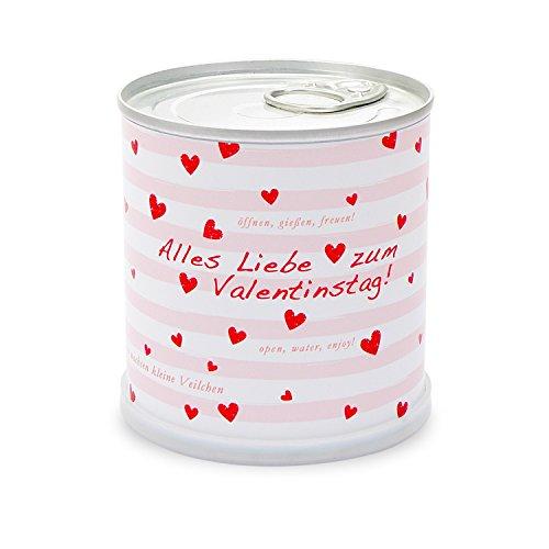Salutations de de la boîte – Saint-Valentin cœurs avec fleurs violette