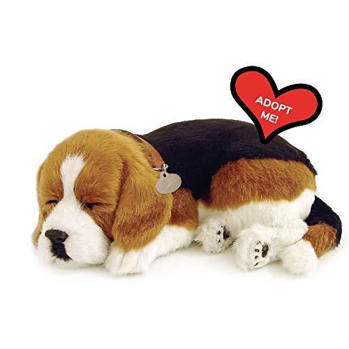 Perfect Petzzz 5519711 Perfect Pets International Schlafender Beagle Plüsch, braun, 10inx7-1/2inx3-1/2in
