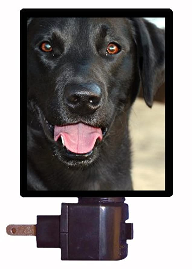 Dog Night Light, Black Lab, Labrador Retriever