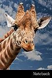 Notebook: Girafe, Animaux, Afrique, Coucher De Soleil Carnet / Journal / Livre d'écriture / Calepin / Agenda / Notes - 6 x 9 pouces (15,24 x 22,86 cm), 110 pages, surface brillante.