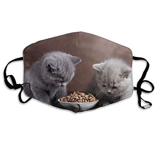 Houity stofdicht wasbaar, twee kittens eten kattenvoer, zacht, ademend, wasbaar, knop verstelbaar, geschikt voor mannen en vrouwen