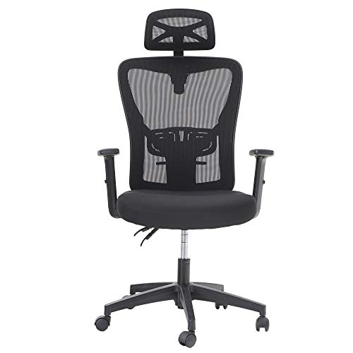 MAISON ARTS Ergonomic Home Office Chair, High Back Mesh Computer Task Chair Desk Chair with Adjustable Headrest, Armrest and Lumbar Support