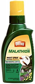 Ortho MAX Malathion Concentrate Insect Spray, 32-Ounce
