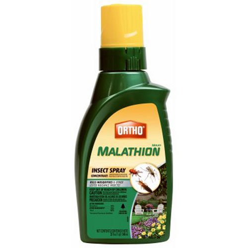 Ortho MAX Malathion Insect Spray Concentrate, 32 oz.