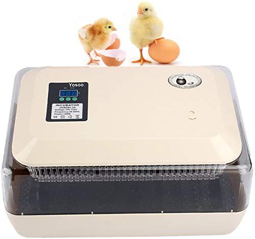 zjchao Incubadora del Huevo volteo Digital automatico con Control de Temperatura,24 Huevos, Incubadora Digital de Polluelo Huevos Incubadora Automática Control De Temperatura para Aves de Corral